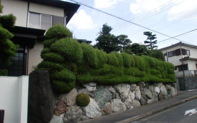 H-garden (6)